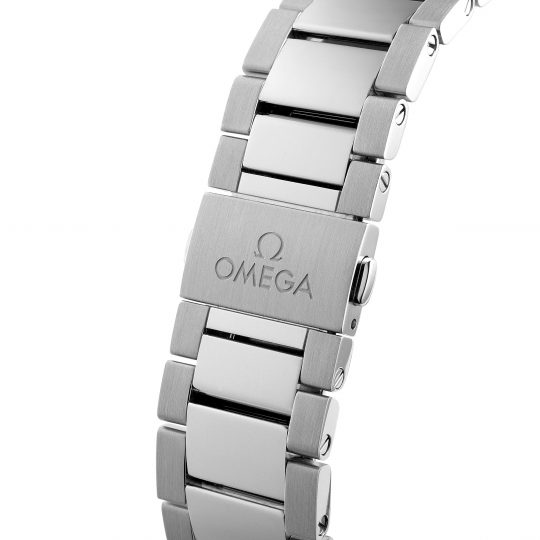 OMEGA Aqua Terra 41mm Steel Gents Watch